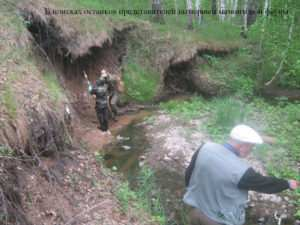 В поисках останков представителей вымершей мамонтовой фауны